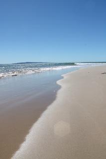 Asher cove beach